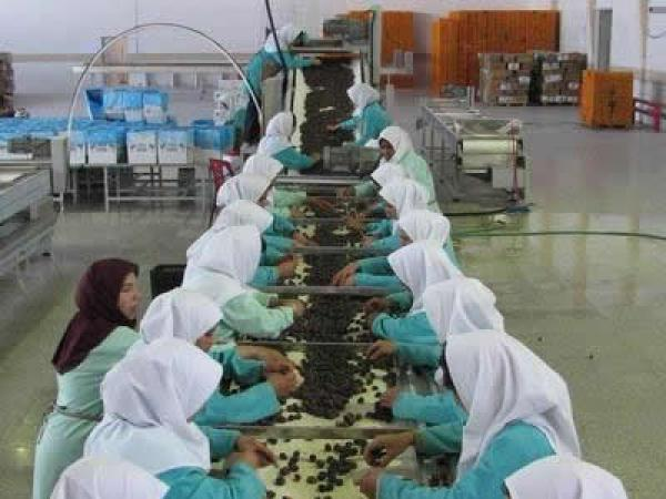 iranian date-11.jpg